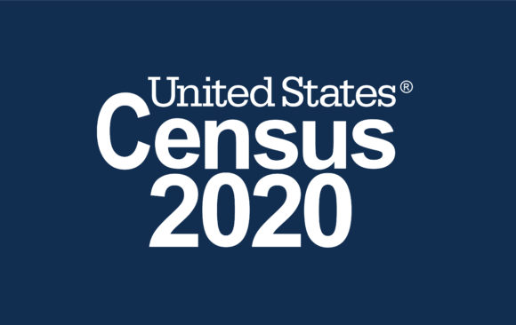 Census 2020: Safety and Security